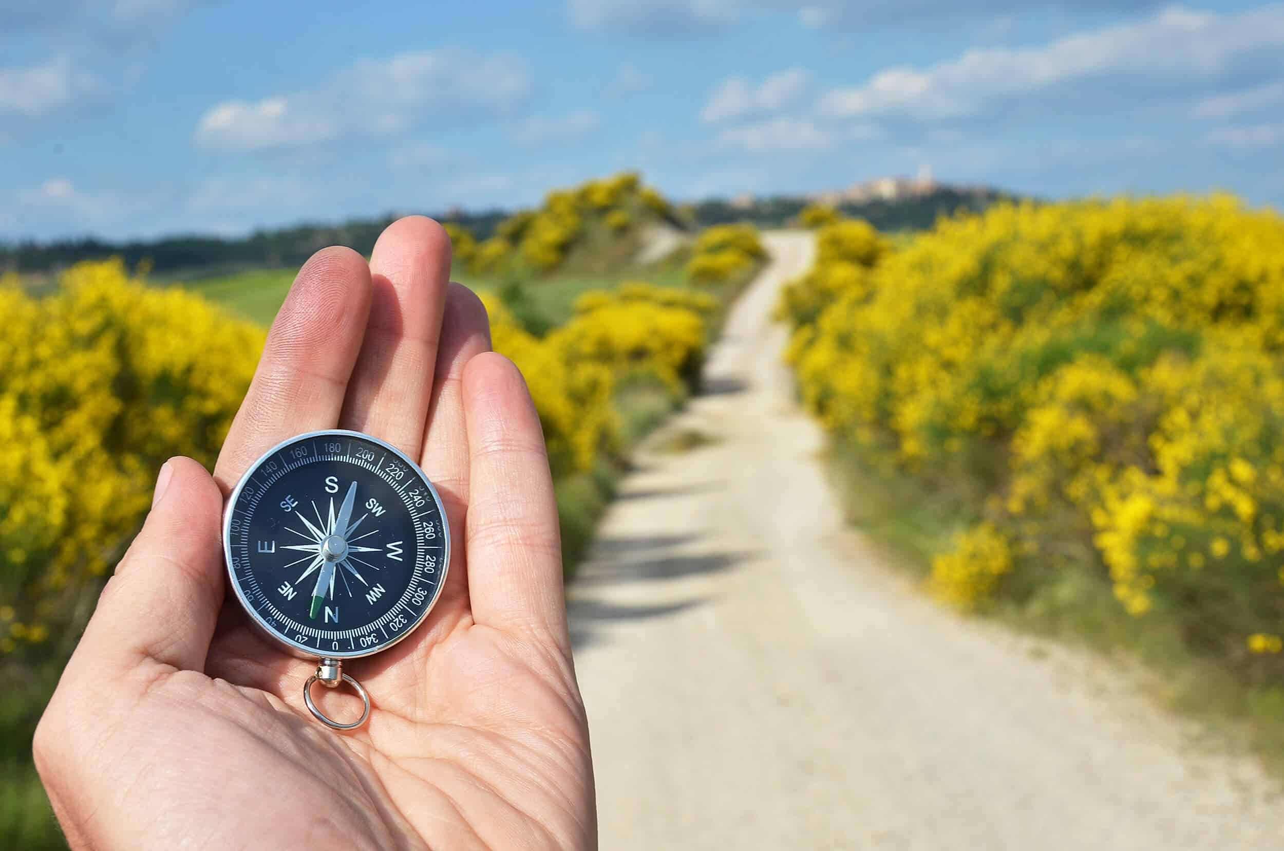 compass into data science how to learn